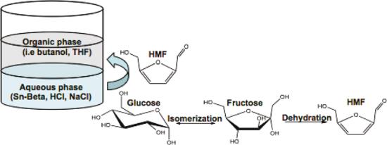 sugar catalysis image 2